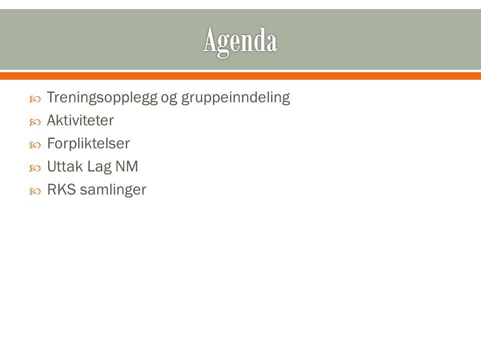  Treningsopplegg og gruppeinndeling  Aktiviteter  Forpliktelser  Uttak Lag NM  RKS samlinger