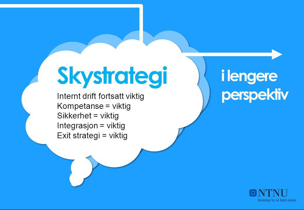 Internt drift fortsatt viktig Kompetanse = viktig Sikkerhet = viktig Integrasjon = viktig Exit strategi = viktig Skystrategi i lengere perspektiv