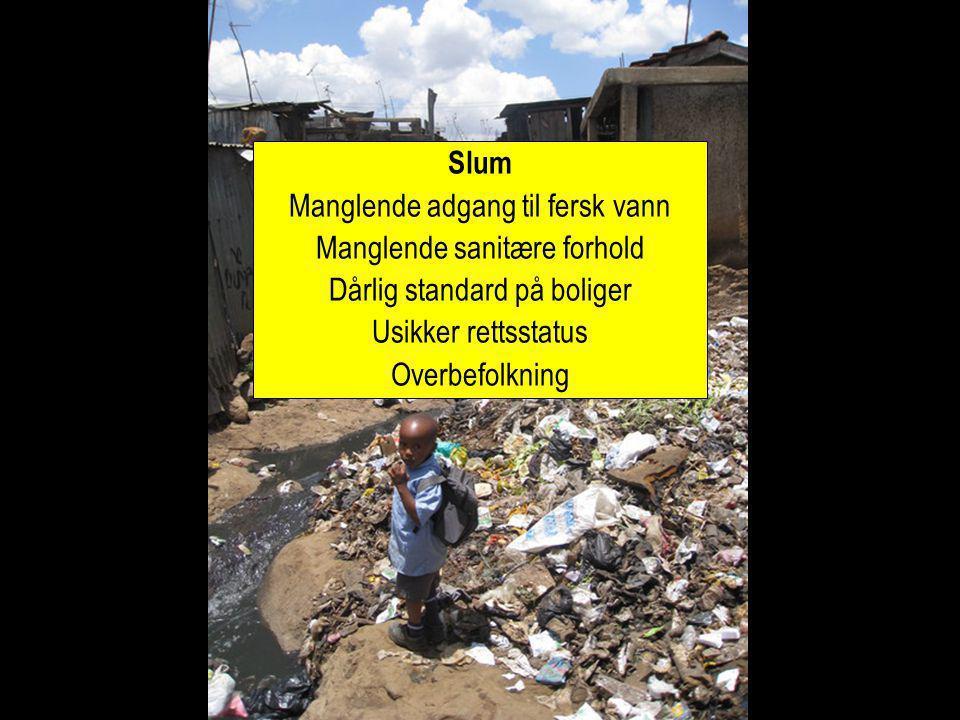 Slum Manglende adgang til fersk vann Manglende sanitære forhold Dårlig standard på boliger Usikker rettsstatus Overbefolkning