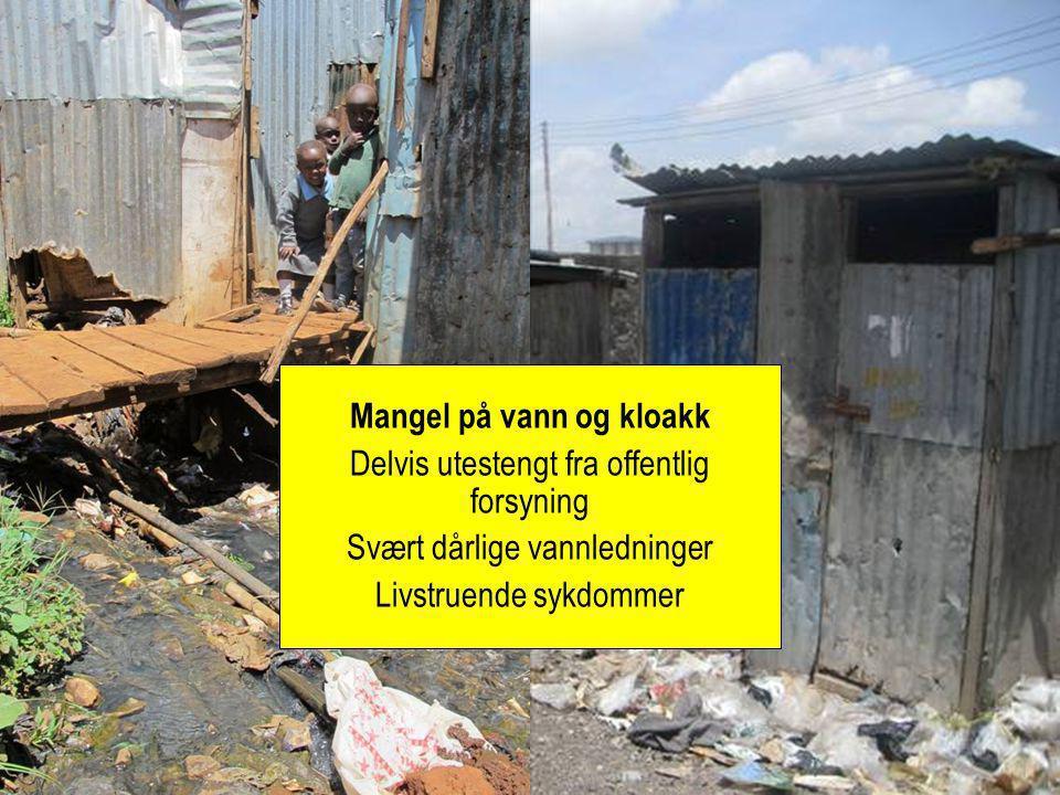 Mangel på vann og kloakk Delvis utestengt fra offentlig forsyning Svært dårlige vannledninger Livstruende sykdommer