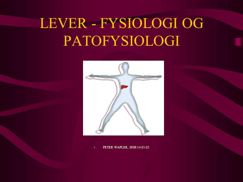 LEVER - FYSIOLOGI OG PATOFYSIOLOGI PETER WAPLER, HSH 14.05.02