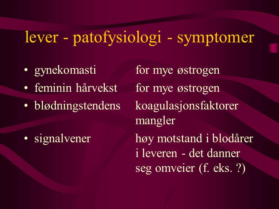 lever - patofysiologi - symptomer gynekomastifor mye østrogen feminin hårvekstfor mye østrogen blødningstendenskoagulasjonsfaktorer mangler signalvenerhøy motstand i blodårer i leveren - det danner seg omveier (f.