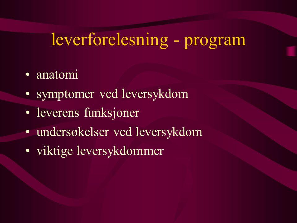 lever - sykdommer hyppigste årsak til leversykdom i Norge - ALKOHOL