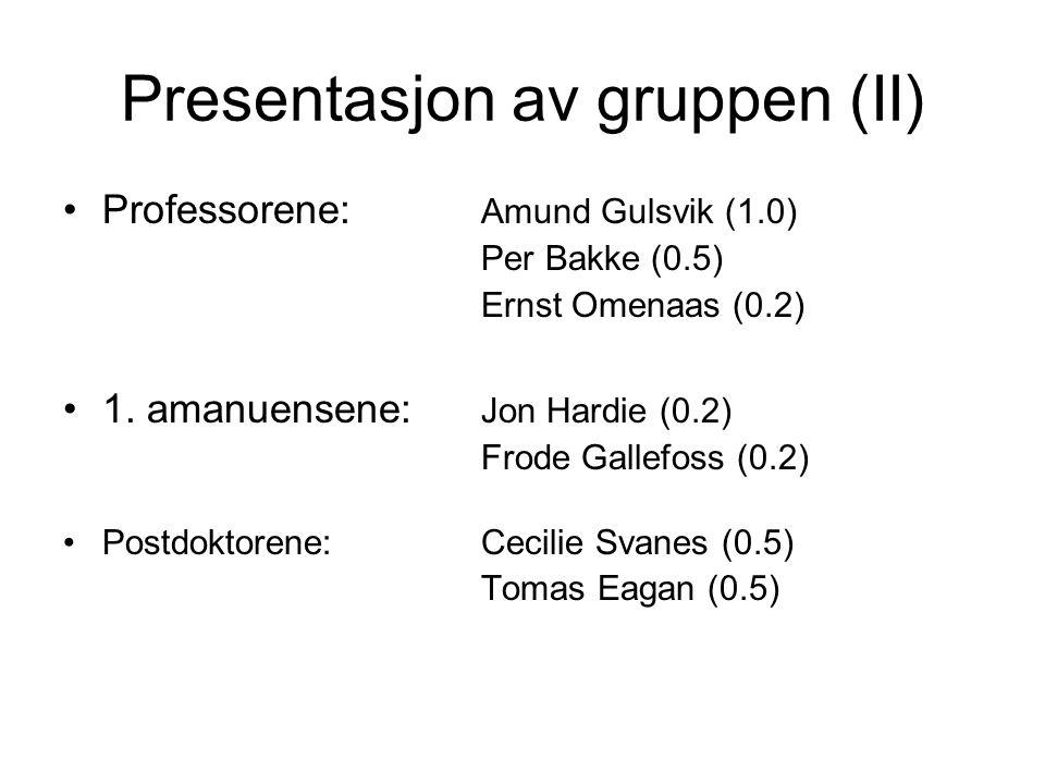 Presentasjon av gruppen (II) Professorene: Amund Gulsvik (1.0) Per Bakke (0.5) Ernst Omenaas (0.2) 1. amanuensene: Jon Hardie (0.2) Frode Gallefoss (0