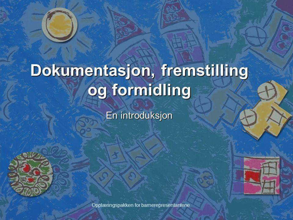 Opplæringspakken for barnerepresentantene Dokumentasjon, fremstilling og formidling En introduksjon