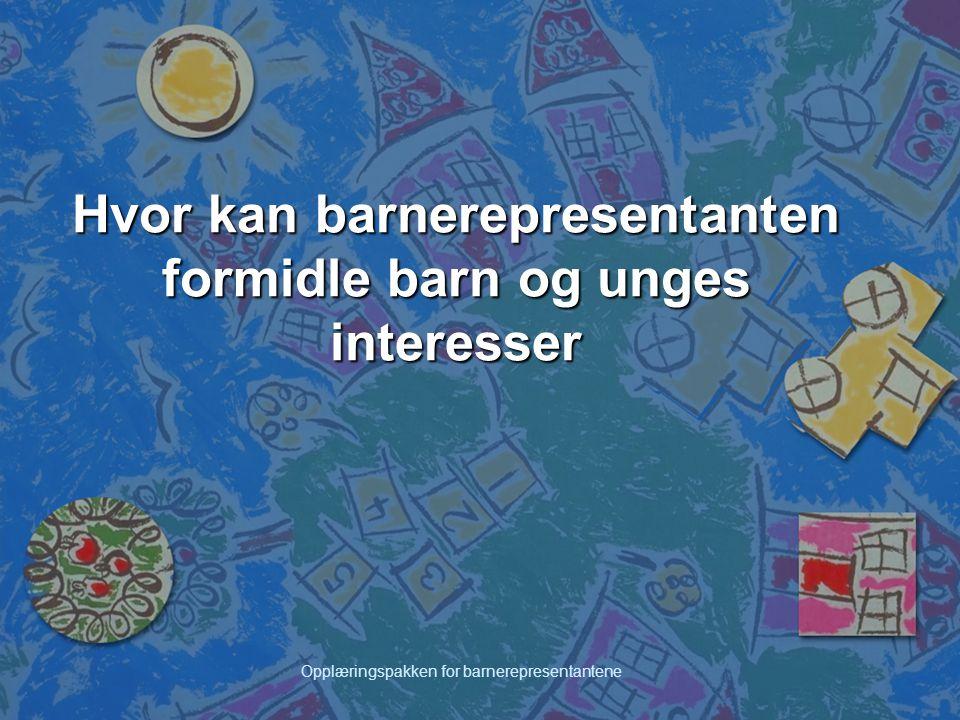 Opplæringspakken for barnerepresentantene Barnetråkk som metode Metodikken er utviklet av Fylkesmannen i Vestfold og Vestfold fylkeskommune i samarbeid med et fagteam i Vestfold, og metoden har vært i bruk siden 1993.