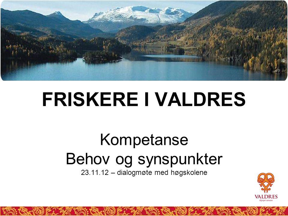 FRISKERE I VALDRES Kompetanse Behov og synspunkter 23.11.12 – dialogmøte med høgskolene