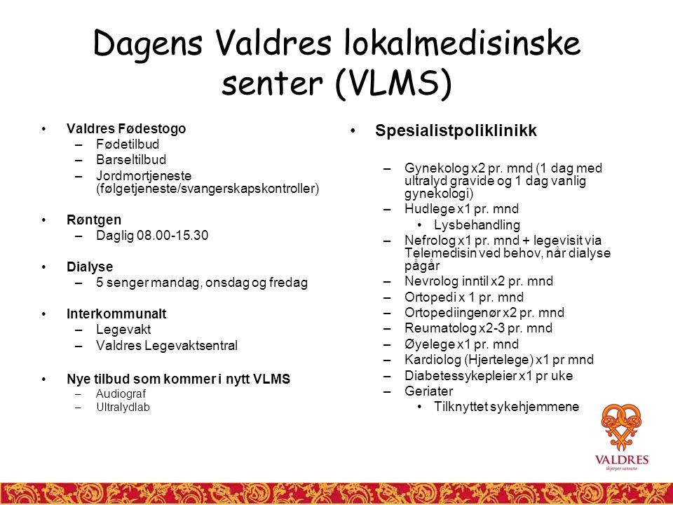 Dagens Valdres lokalmedisinske senter (VLMS) Valdres Fødestogo –Fødetilbud –Barseltilbud –Jordmortjeneste (følgetjeneste/svangerskapskontroller) Røntgen –Daglig 08.00-15.30 Dialyse –5 senger mandag, onsdag og fredag Interkommunalt –Legevakt –Valdres Legevaktsentral Nye tilbud som kommer i nytt VLMS –Audiograf –Ultralydlab Spesialistpoliklinikk –Gynekolog x2 pr.