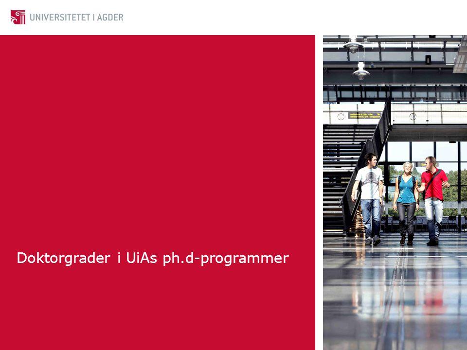 Doktorgrader ved andre institusjoner