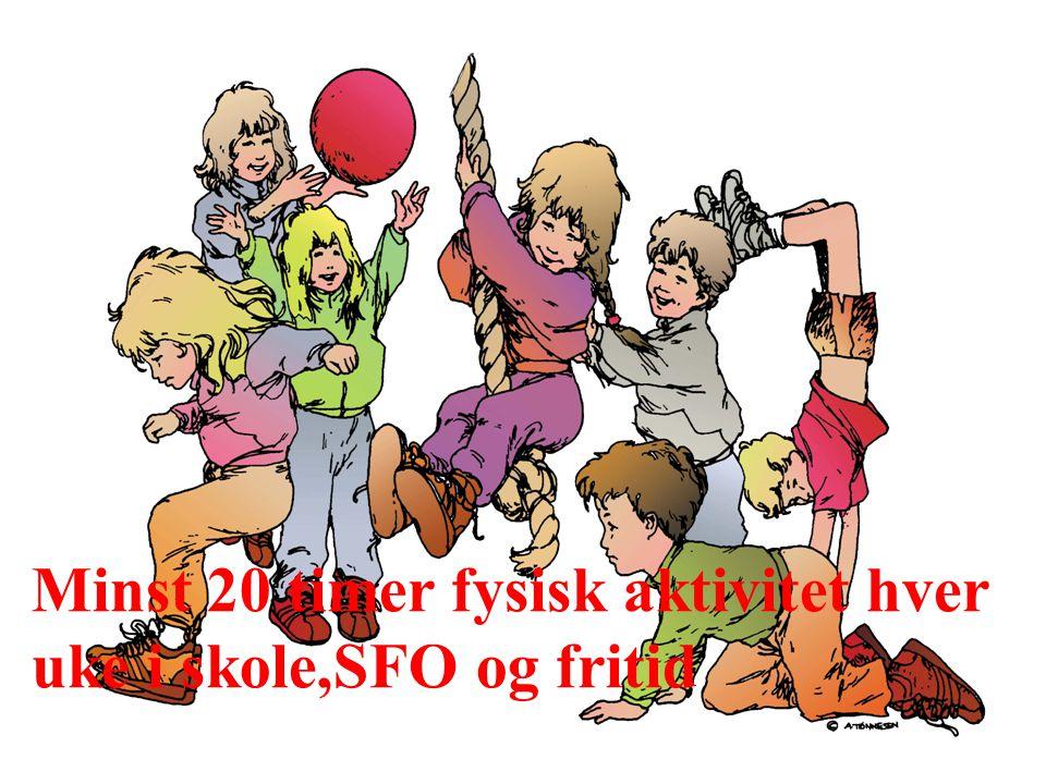 © Bergen kommune Minst 20 timer fysisk aktivitet hver uke i skole,SFO og fritid