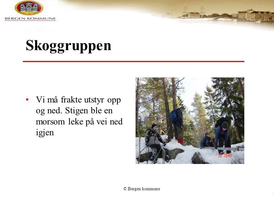 © Bergen kommune Skoggruppen Vi må frakte utstyr opp og ned. Stigen ble en morsom leke på vei ned igjen