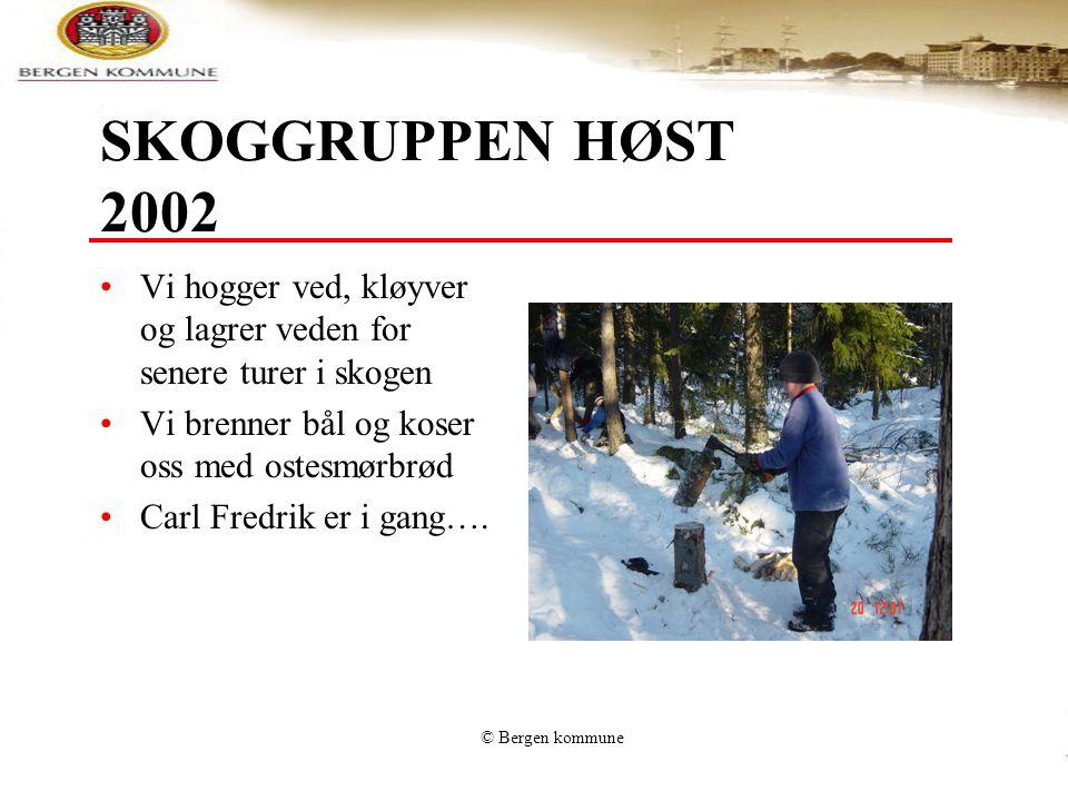 © Bergen kommune SKOGGRUPPEN HØST 2002 Vi hogger ved, kløyver og lagrer veden for senere turer i skogen Vi brenner bål og koser oss med ostesmørbrød C