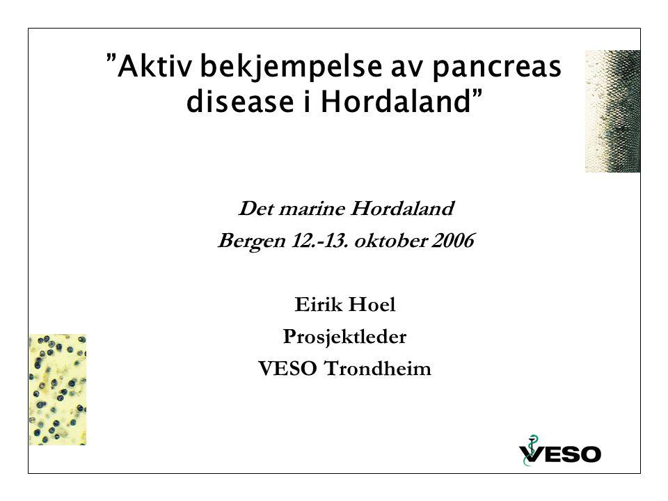 Aktiv bekjempelse av pancreas disease i Hordaland Det marine Hordaland Bergen 12.-13.