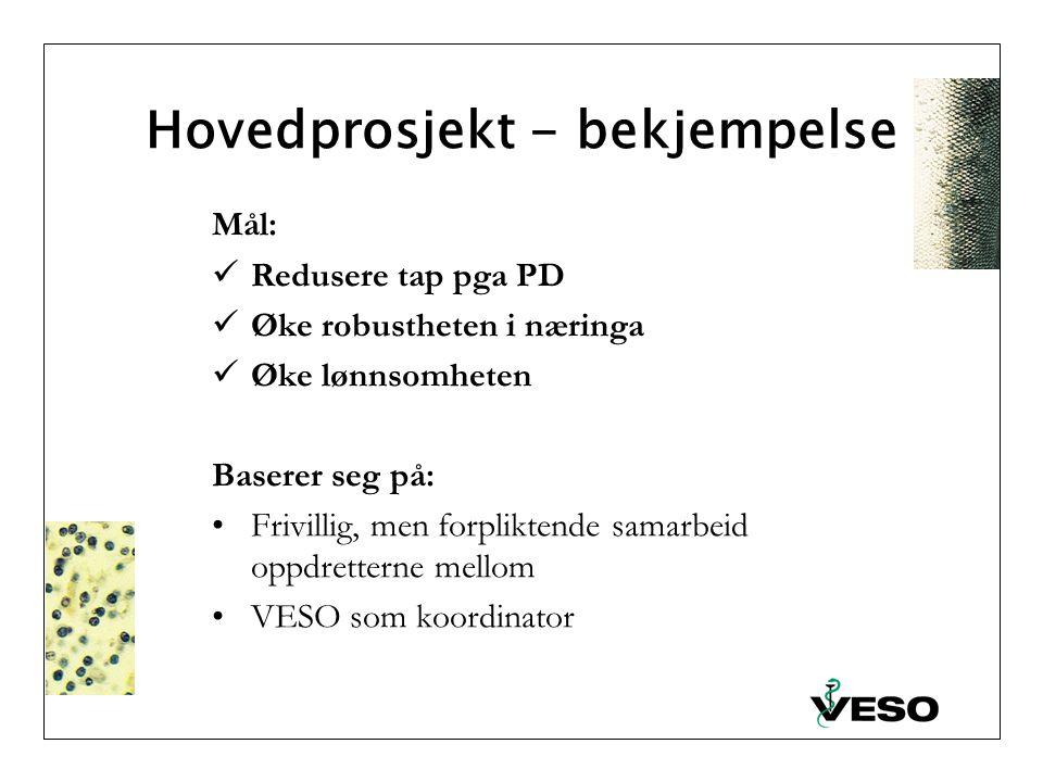 Hovedprosjekt - bekjempelse Mål: Redusere tap pga PD Øke robustheten i næringa Øke lønnsomheten Baserer seg på: Frivillig, men forpliktende samarbeid oppdretterne mellom VESO som koordinator