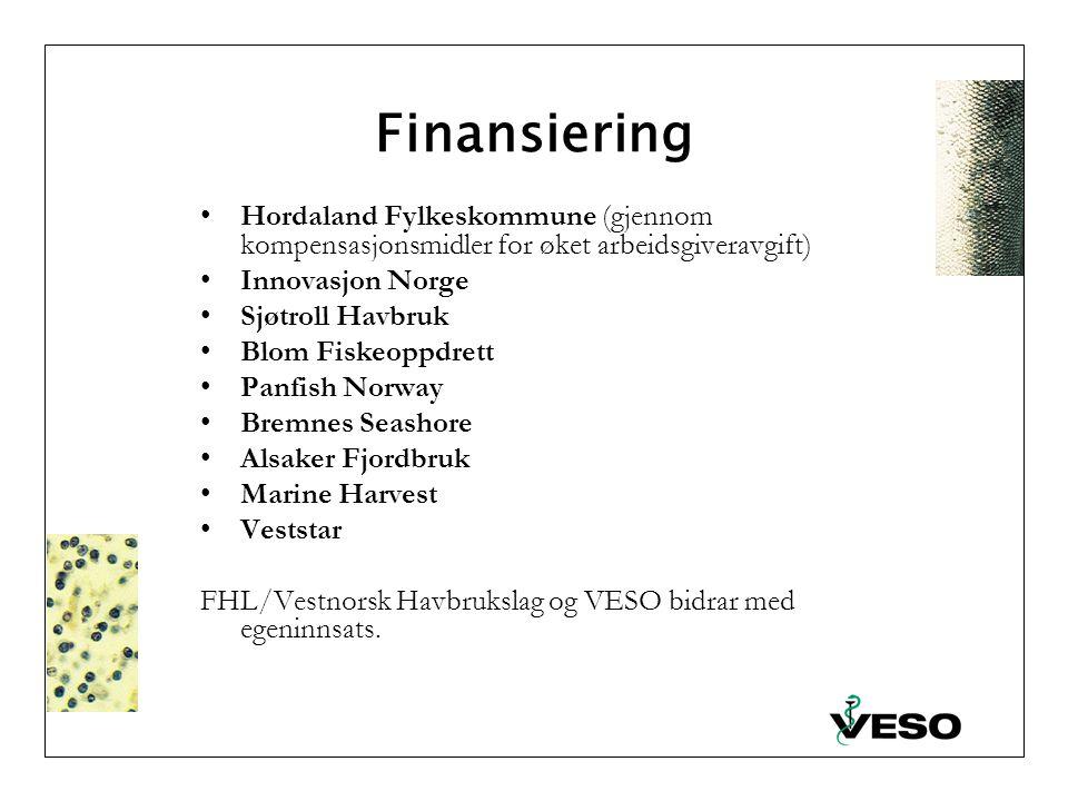 Finansiering Hordaland Fylkeskommune (gjennom kompensasjonsmidler for øket arbeidsgiveravgift) Innovasjon Norge Sjøtroll Havbruk Blom Fiskeoppdrett Panfish Norway Bremnes Seashore Alsaker Fjordbruk Marine Harvest Veststar FHL/Vestnorsk Havbrukslag og VESO bidrar med egeninnsats.