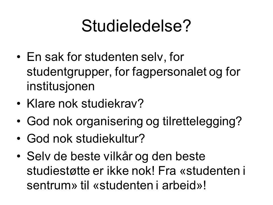 Studieledelse.