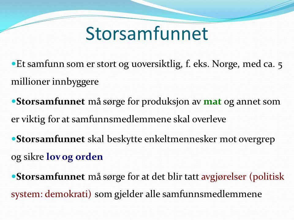 Storsamfunnet Et samfunn som er stort og uoversiktlig, f. eks. Norge, med ca. 5 millioner innbyggere Storsamfunnet må sørge for produksjon av mat og a