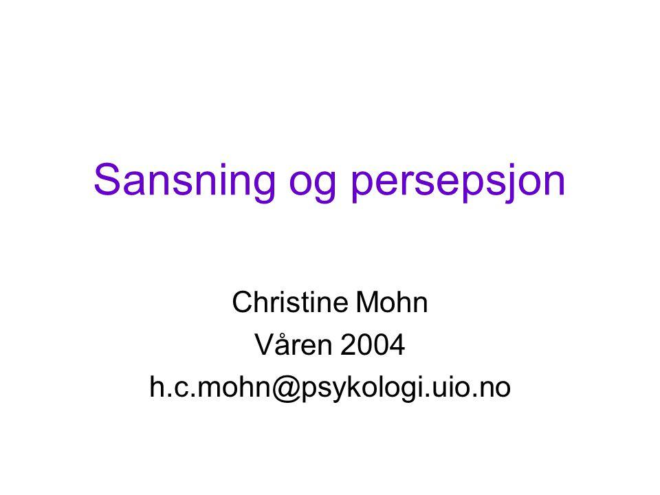 Sansning og persepsjon Christine Mohn Våren 2004 h.c.mohn@psykologi.uio.no