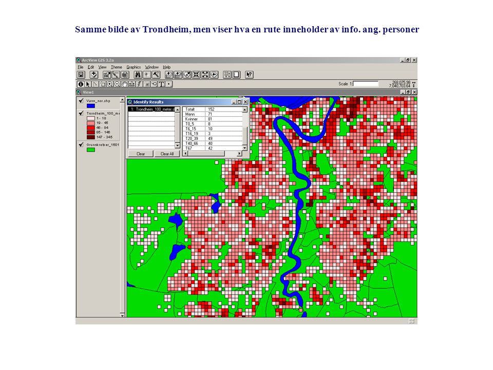 Samme bilde av Trondheim, men viser hva en rute inneholder av info. ang. personer