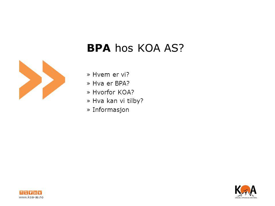 www.koa-as.no » BPA hos KOA AS. » Hvem er vi. » Hva er BPA.