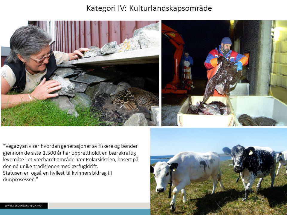 Kategori IV: Kulturlandskapsområde Vegaøyan viser hvordan generasjoner av fiskere og bønder gjennom de siste 1.500 år har opprettholdt en bærekraftig levemåte i et værhardt område nær Polarsirkelen, basert på den nå unike tradisjonen med ærfugldrift.