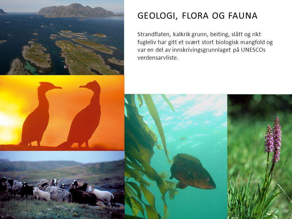GEOLOGI, FLORA OG FAUNA Strandflaten, kalkrik grunn, beiting, slått og rikt fugleliv har gitt et svært stort biologisk mangfold og var en del av innskrivingsgrunnlaget på UNESCOs verdensarvliste.