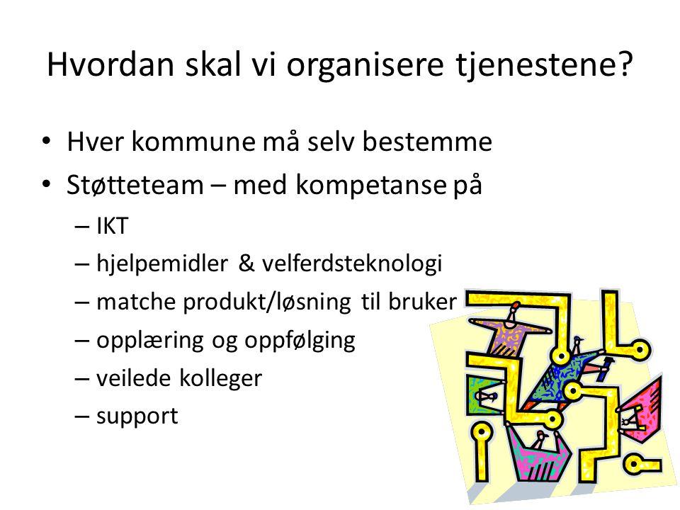 Hvordan skal vi organisere tjenestene? Hver kommune må selv bestemme Støtteteam – med kompetanse på – IKT – hjelpemidler & velferdsteknologi – matche