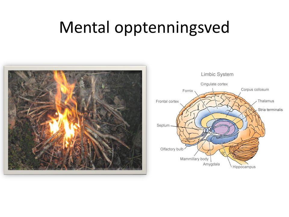 Mental opptenningsved