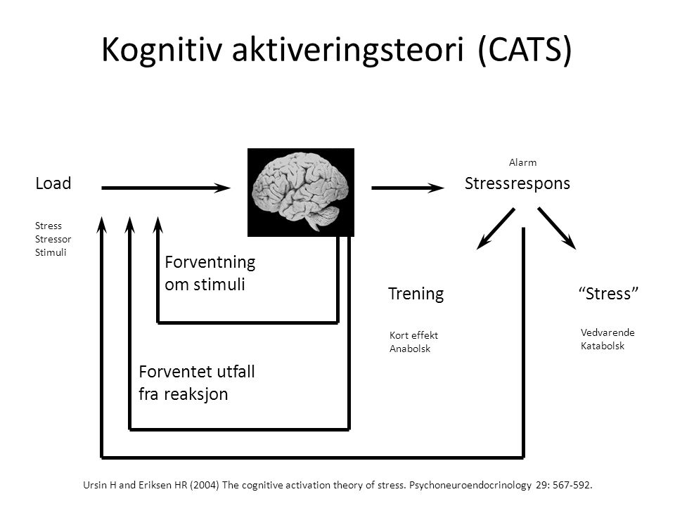 "Ursin H and Eriksen HR (2004) The cognitive activation theory of stress. Psychoneuroendocrinology 29: 567-592. LoadStressrespons Trening""Stress"" Forve"