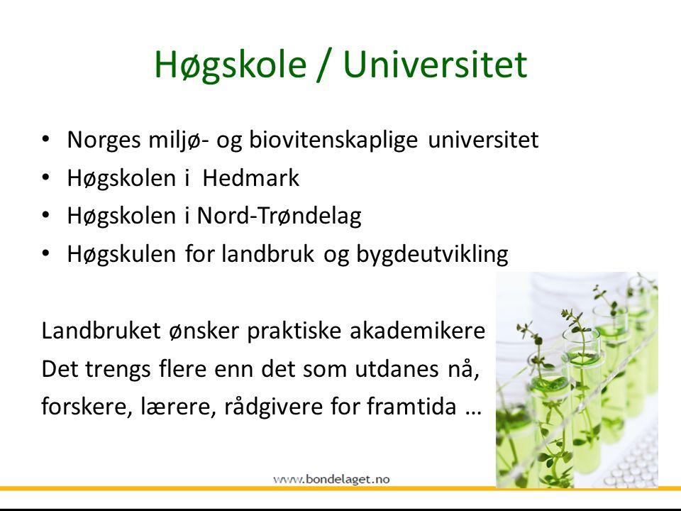 Høgskole / Universitet Norges miljø- og biovitenskaplige universitet Høgskolen i Hedmark Høgskolen i Nord-Trøndelag Høgskulen for landbruk og bygdeutvikling Landbruket ønsker praktiske akademikere Det trengs flere enn det som utdanes nå, forskere, lærere, rådgivere for framtida …