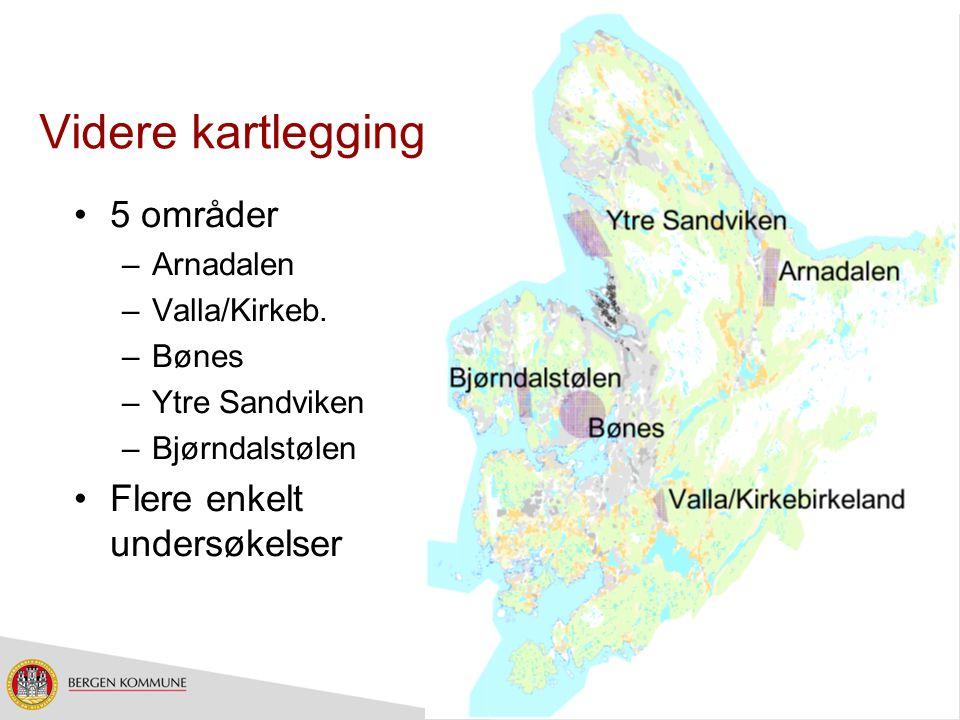 Videre kartlegging 5 områder –Arnadalen –Valla/Kirkeb. –Bønes –Ytre Sandviken –Bjørndalstølen Flere enkelt undersøkelser
