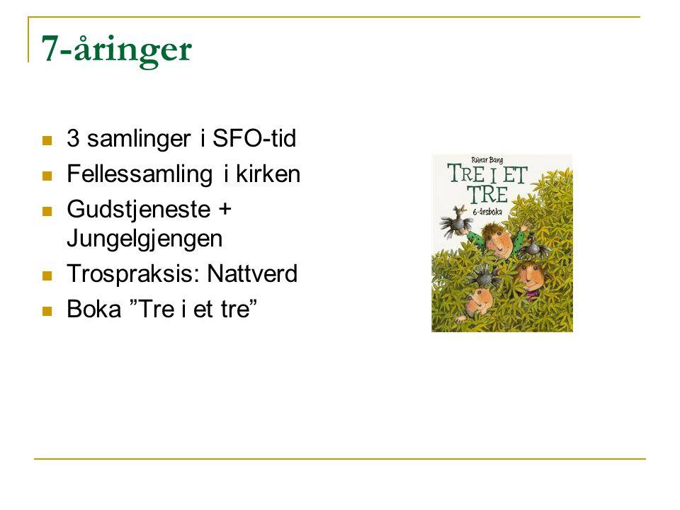 """7-åringer 3 samlinger i SFO-tid Fellessamling i kirken Gudstjeneste + Jungelgjengen Trospraksis: Nattverd Boka """"Tre i et tre"""""""