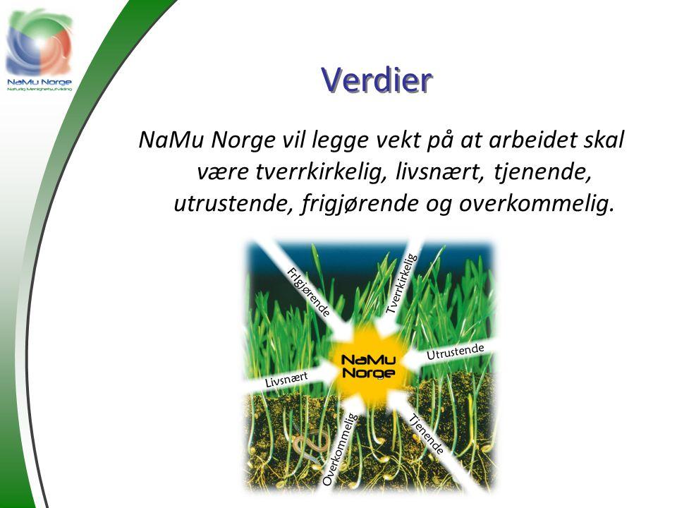 Verdier NaMu Norge vil legge vekt på at arbeidet skal være tverrkirkelig, livsnært, tjenende, utrustende, frigjørende og overkommelig. Tverrkirkelig L