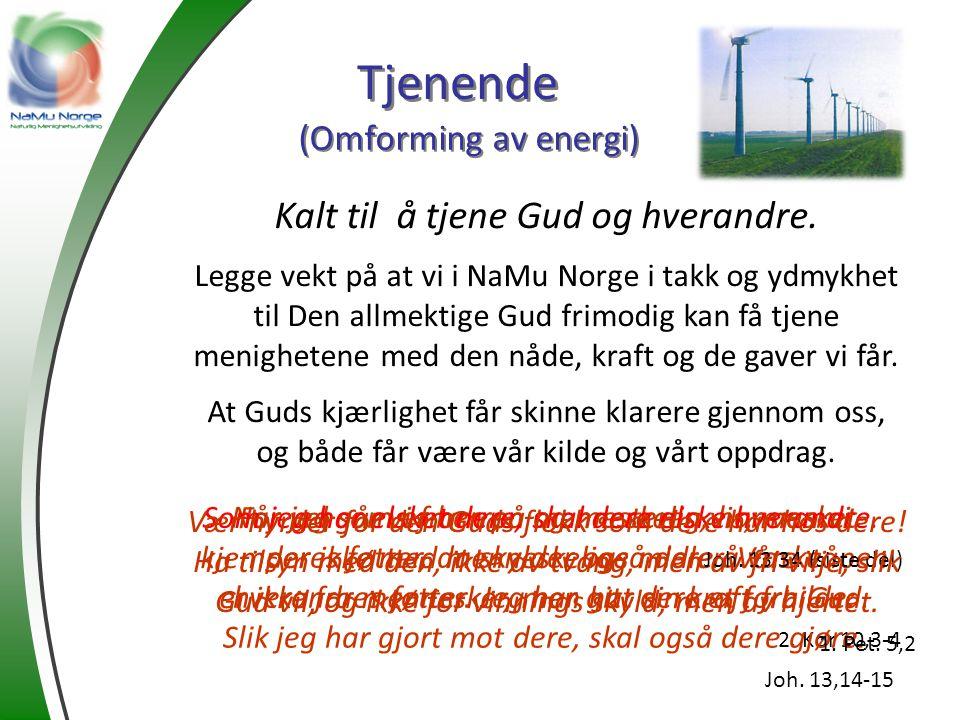 Tjenende Kalt til å tjene Gud og hverandre. Legge vekt på at vi i NaMu Norge i takk og ydmykhet til Den allmektige Gud frimodig kan få tjene menighete