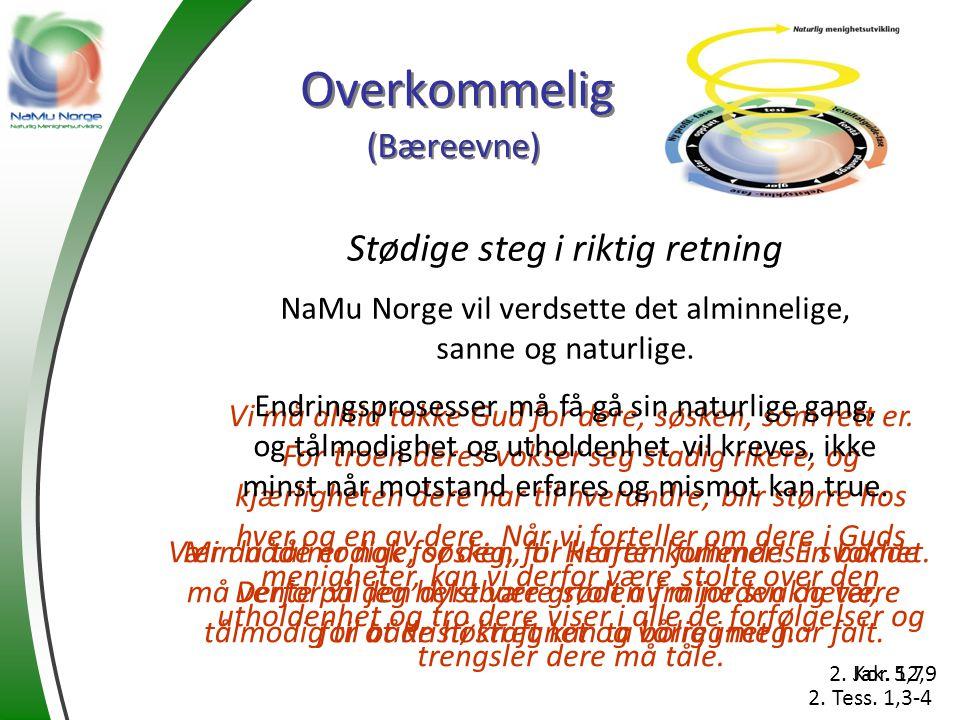 Overkommelig Stødige steg i riktig retning NaMu Norge vil verdsette det alminnelige, sanne og naturlige. (Bæreevne) Min nåde er nok for deg, for kraft
