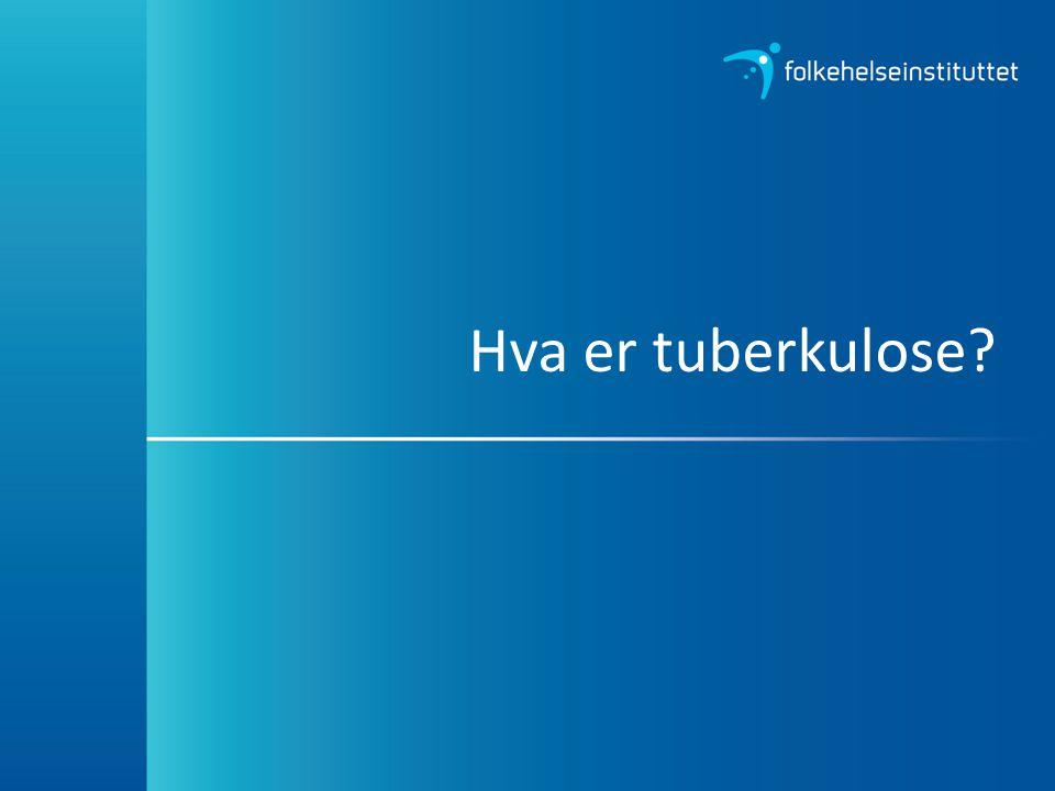 Hva er tuberkulose?