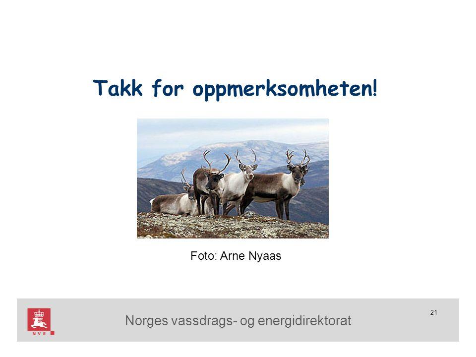 Norges vassdrags- og energidirektorat 21 Takk for oppmerksomheten! Foto: Arne Nyaas