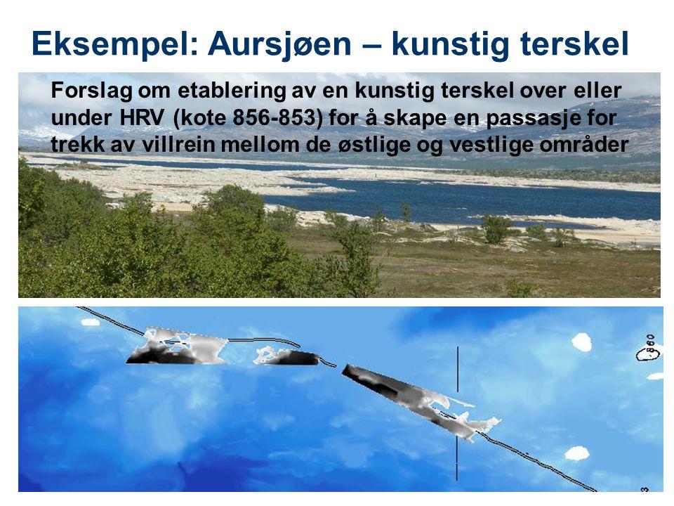 9 Eksempel: Aursjøen – kunstig terskel Forslag om etablering av en kunstig terskel over eller under HRV (kote 856-853) for å skape en passasje for tre