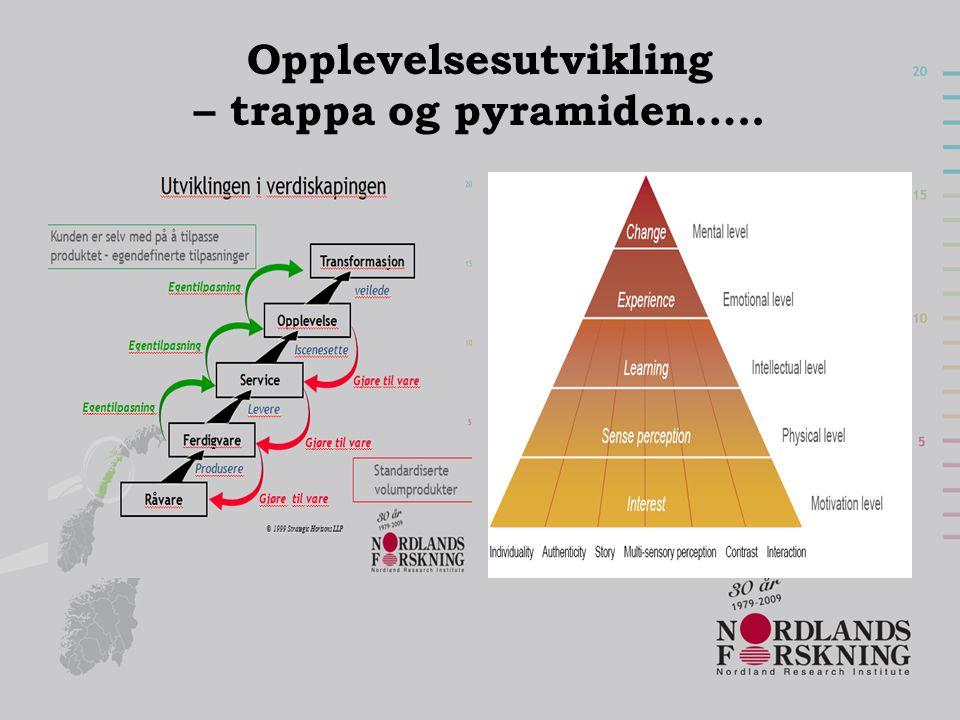 Opplevelsesutvikling – trappa og pyramiden…..