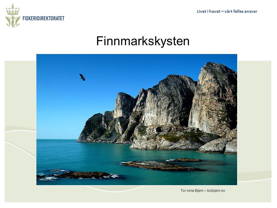 Livet i havet – vårt felles ansvar Tor Arne Bjørn – biobjørn.no Finnmarkskysten