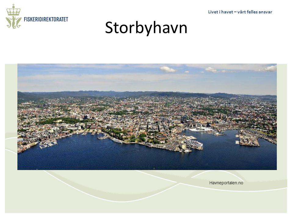 Livet i havet – vårt felles ansvar Storbyhavn Havneportalen.no