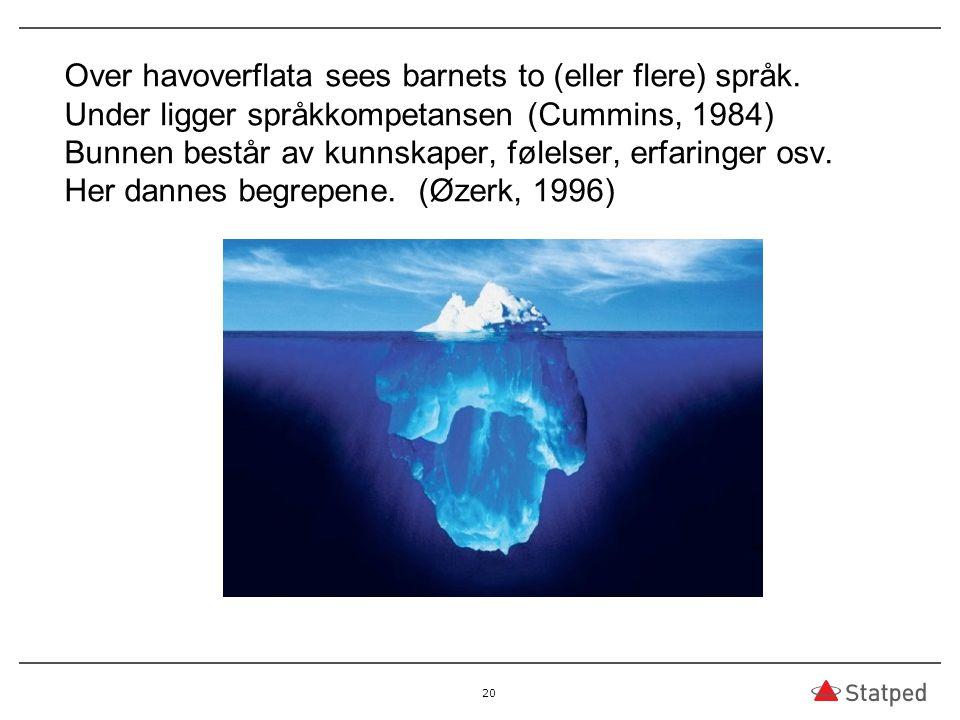 Over havoverflata sees barnets to (eller flere) språk. Under ligger språkkompetansen (Cummins, 1984) Bunnen består av kunnskaper, følelser, erfaringer