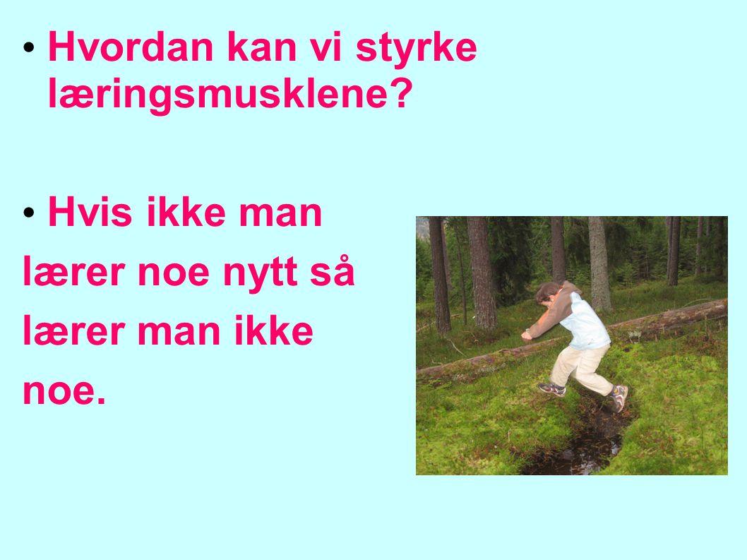 Aktivitetsskolen barnas fritid Morgenåpning (7.30-8.30) Etter skoletid Spisetid (13.30) Aktivitetstid Utetid Stenger 16.45