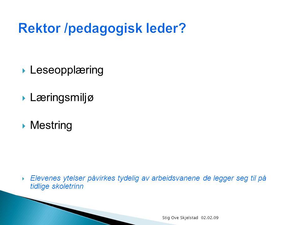  Leseopplæring  Læringsmiljø  Mestring  Elevenes ytelser påvirkes tydelig av arbeidsvanene de legger seg til på tidlige skoletrinn Stig Ove Skjels