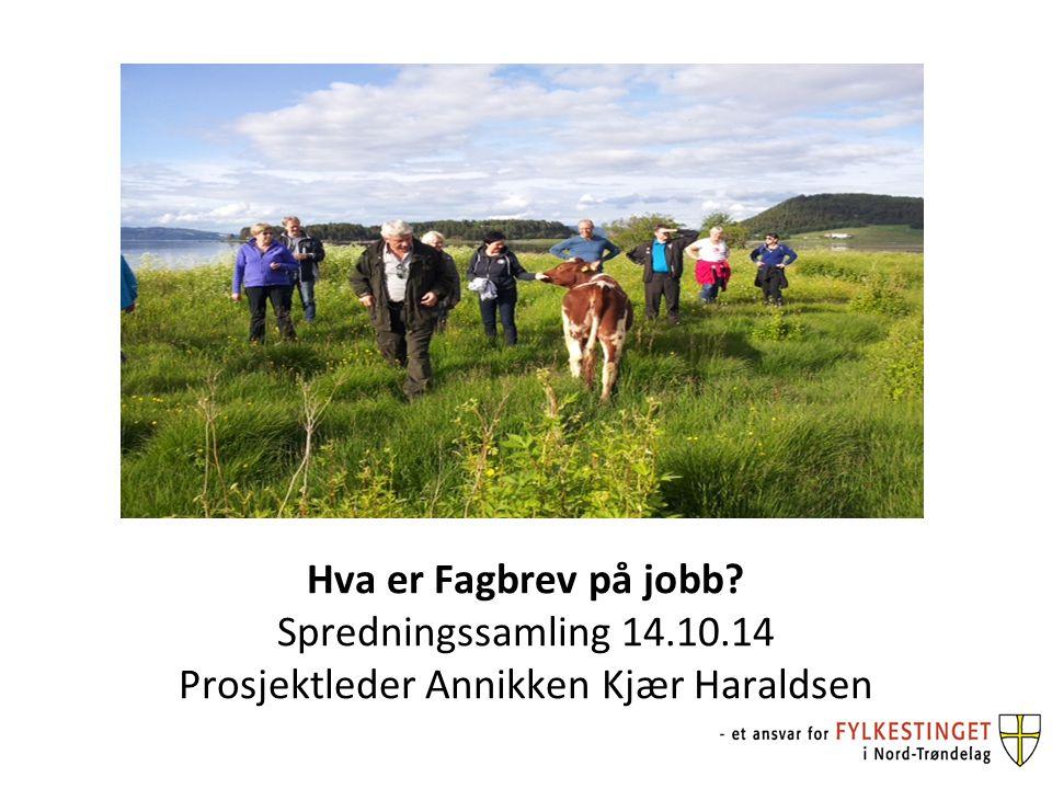 Hva er Fagbrev på jobb Spredningssamling 14.10.14 Prosjektleder Annikken Kjær Haraldsen