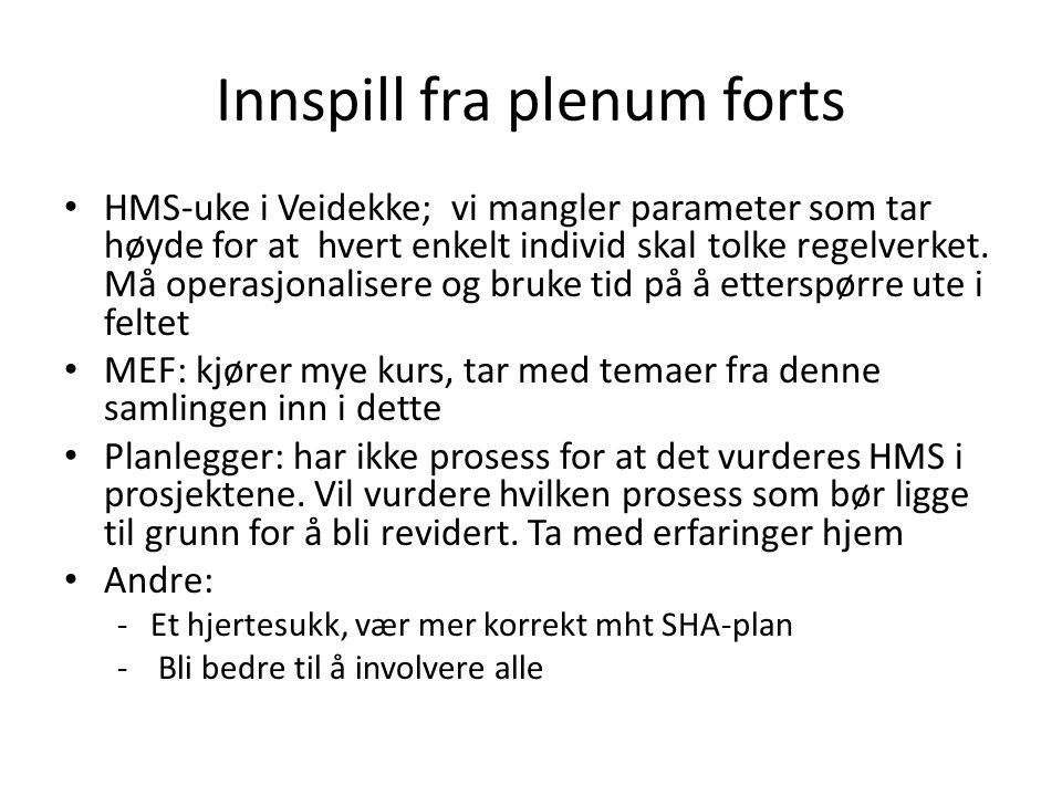 Innspill fra plenum forts HMS-uke i Veidekke; vi mangler parameter som tar høyde for at hvert enkelt individ skal tolke regelverket.
