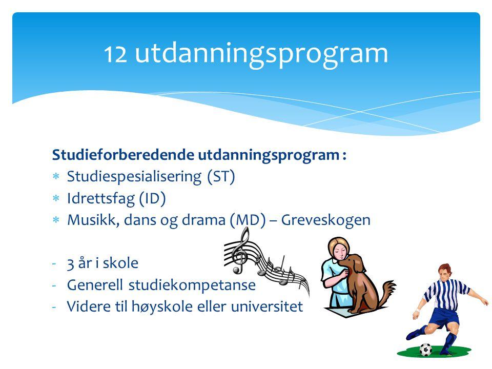 Studieforberedende utdanningsprogram :  Studiespesialisering (ST)  Idrettsfag (ID)  Musikk, dans og drama (MD) – Greveskogen -3 år i skole -Generell studiekompetanse -Videre til høyskole eller universitet 12 utdanningsprogram