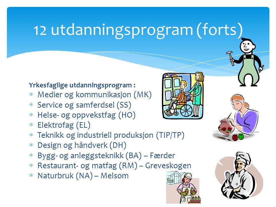 Yrkesfaglige utdanningsprogram :  Medier og kommunikasjon (MK)  Service og samferdsel (SS)  Helse- og oppvekstfag (HO)  Elektrofag (EL)  Teknikk og industriell produksjon (TIP/TP)  Design og håndverk (DH)  Bygg- og anleggsteknikk (BA) – Færder  Restaurant- og matfag (RM) – Greveskogen  Naturbruk (NA) – Melsom 12 utdanningsprogram (forts)