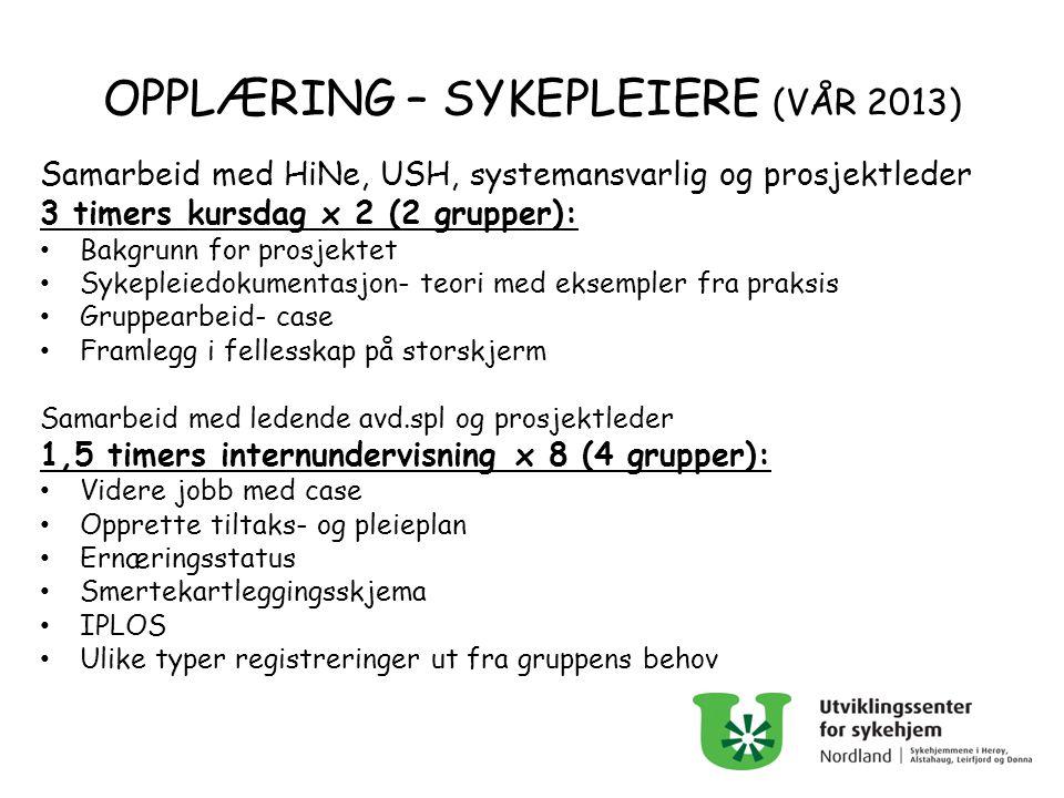 OPPLÆRING – SYKEPLEIERE (VÅR 2013) Samarbeid med HiNe, USH, systemansvarlig og prosjektleder 3 timers kursdag x 2 (2 grupper): Bakgrunn for prosjektet