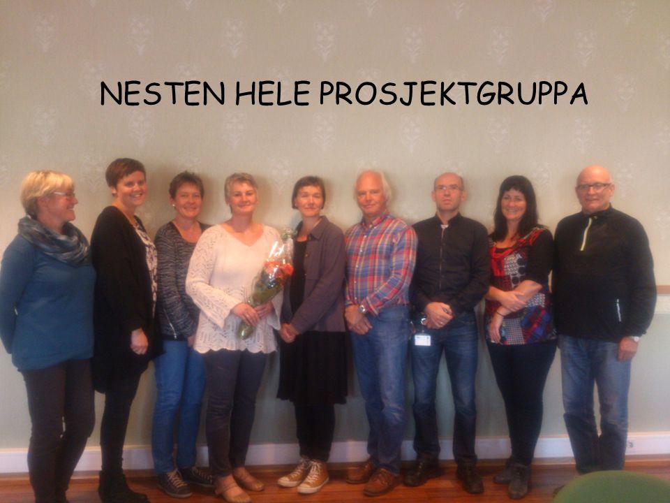 PROSJEKTSTART I samarbeid med leder for USH i Nordland, Ellen Mogård Larsen, og leder for Senter for omsorgsforskning i Nord-Norge, Anne Serine Fottland, ble det utarbeidet og distribuert et spørreskjema for ansatte sykepleiere i hjemmetjeneste (10 stk) og sykehjem (17 stk) i Alstahaug kommune høsten 2012.